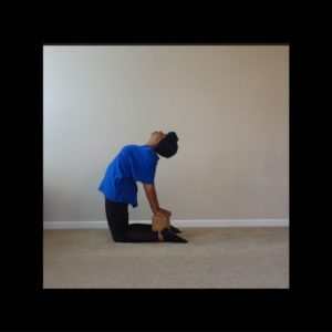 camel pose with block